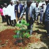 KyU Tree Planting Day July, 2015